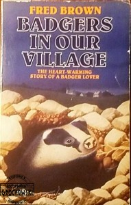 Badgers in our village
